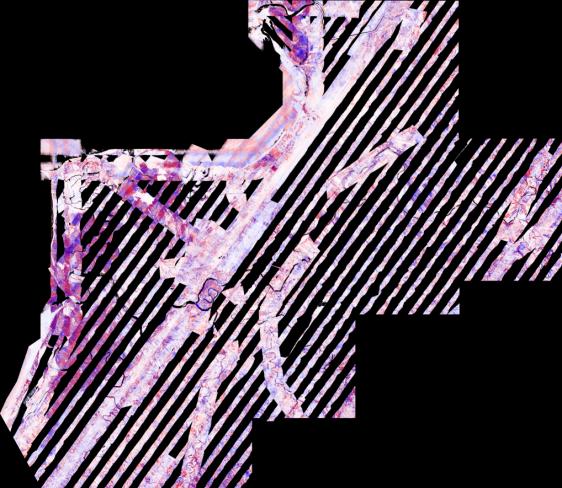 fiji_overlap_diff