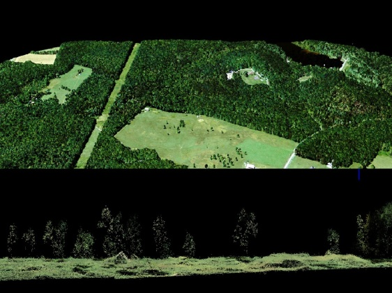 Noise-free SPL data draped with multispectral imagery (NAIP). The point cloud shows individual trees.