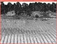 This results in ground with very different reflective properties and therefore drastically different intensity values.